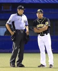 金本監督「ビデオ判定ないし」危険球退場振り返る - プロ野球 : 日刊スポーツ