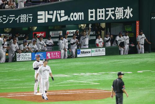 日本代表対台湾代表 9回裏日本2死満塁、外崎修汰は中前に2点適時打を放つ、盛り上がるベンチ(撮影・梅根麻紀))