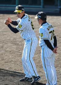 阪神矢野監督、春季キャンプ序盤までノーサイン継続 - プロ野球 : 日刊スポーツ