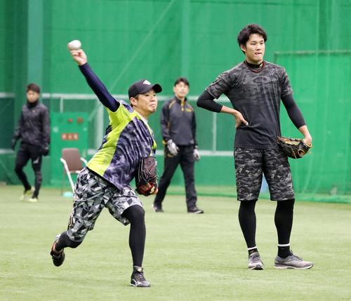 自主トレを公開した西(左)は藤浪(右)、才木とキャッチボールする(2019年1月20日)