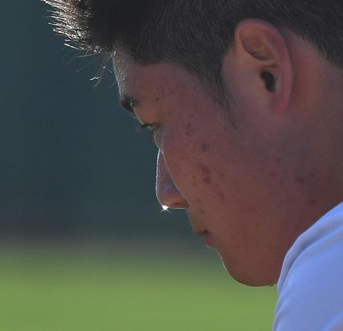 キャンプイン初日、アリゾナの太陽を浴びながら、アップから声を出し懸命に動く日本ハム清宮。打撃練習を終え再びフィールドでトレーニングをする清宮の顔にはキラリと光る汗が流れる。今シーズンもひと際輝く選手だと確信しました(撮影・菅敏)