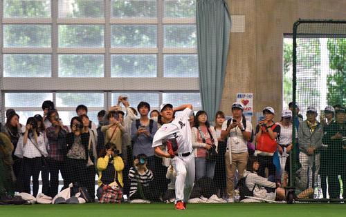 ファンの前で室内練習場でキャッチボールするロッテ藤原(撮影・滝沢徹郎)