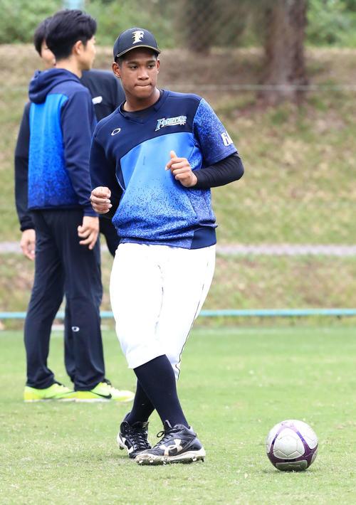 サッカーボールを蹴る日本ハム万波(撮影・江口和貴)