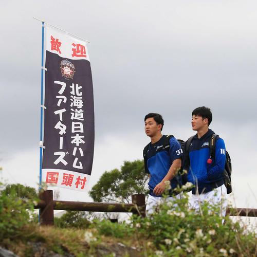 歩いて球場入りする日本ハム吉田輝(右)と柿木(撮影・江口和貴)