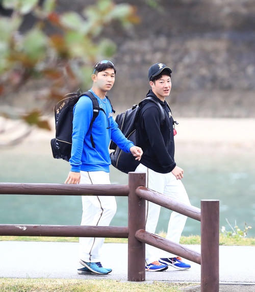 今日も一緒に球場入りする日本ハム吉田輝星(右)と柿木蓮(撮影・江口和貴)