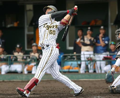 4回裏阪神1死一塁、中谷将大は左越え2点本塁打を放つ(撮影・上山淳一)