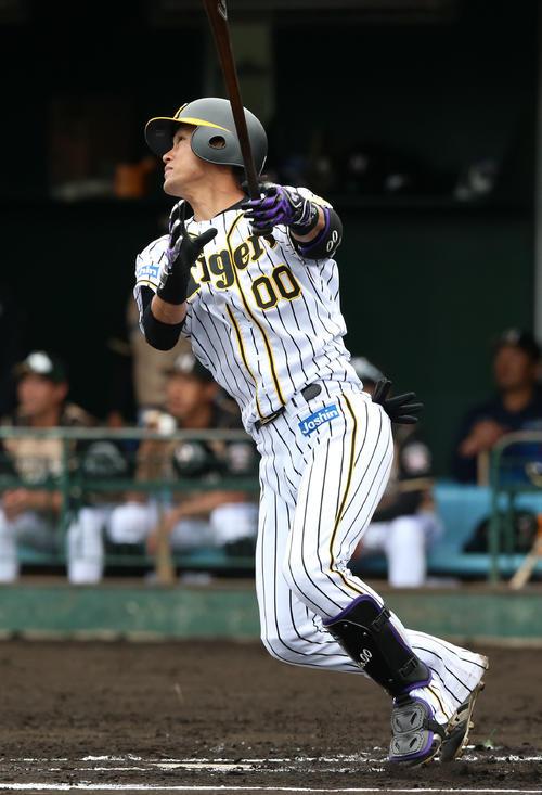 1回裏阪神無死、上本博紀は中越え本塁打を放つ(撮影・上山淳一)