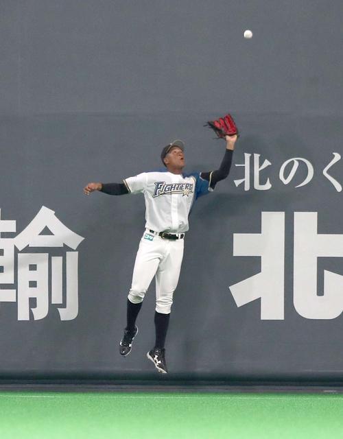 日本ハム対DeNA 2回表DeNA1死、宮崎の打球を好捕する万波(撮影・黒川智章)