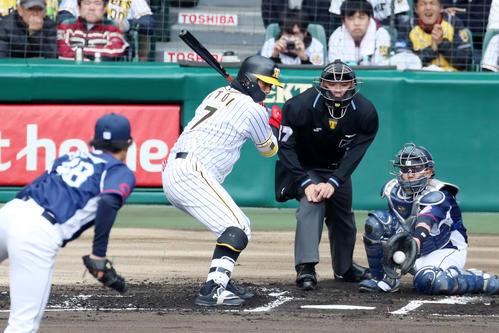 1回表阪神2死、糸井は四球を選んで出塁(撮影・加藤哉)