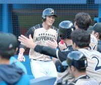 日本ハム王3安打で状態↑ コーチに助言求め成果 - プロ野球 : 日刊スポーツ