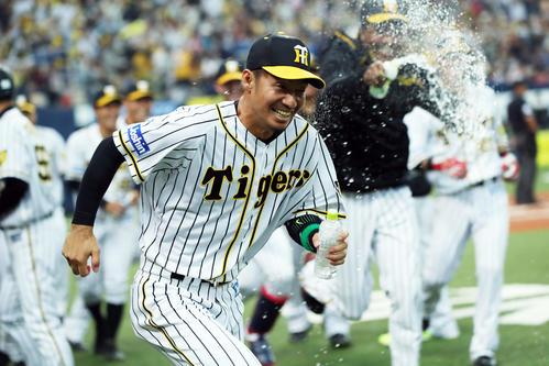 阪神対ヤクルト 11回裏阪神1死三塁、サヨナラ勝ちにつながる三塁打を放った鳥谷(手前)は、ナインにボトルを持って追い掛けられる(撮影・前田充)