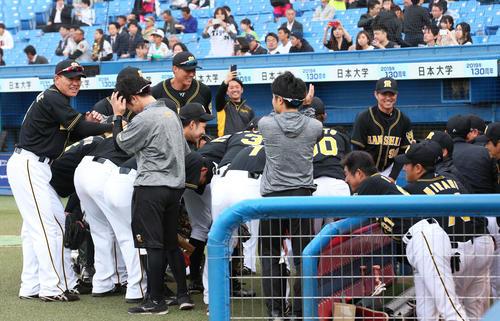 ヤクルト対阪神 試合前に円陣を組みリラックスした表情を見せる阪神ナイン(撮影・上山淳一)