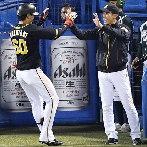 ヤクルト対阪神 6回表阪神2死一塁、左越え2点本塁打を放った中谷(左)を笑顔で迎える矢野監督(撮影・横山健太)