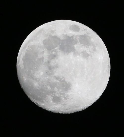 ヤクルト対阪神 3回表阪神無死、夜空に月が浮かぶ(撮影・上山淳一)