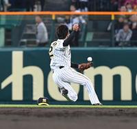 阪神北條2失策「チームとランディに迷惑を掛けて」 - プロ野球 : 日刊スポーツ