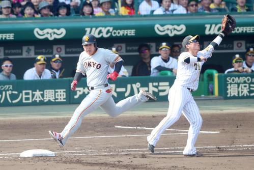 阪神対巨人 4回表巨人無死一塁、岡本は遊ゴロ敵失でセーフとなる(撮影・加藤哉)