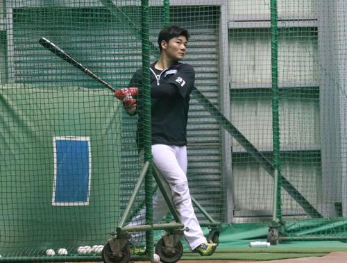 室内練習場で打撃練習する日本ハム清宮(撮影・山崎純一)