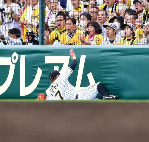 4回表広島2無死、鈴木の右邪飛を滑り込んで好捕する右翼手糸井(撮影・清水貴仁)