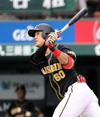阪神中谷が最強スペアに、福留休養日などで出場増へ - プロ野球 : 日刊スポーツ