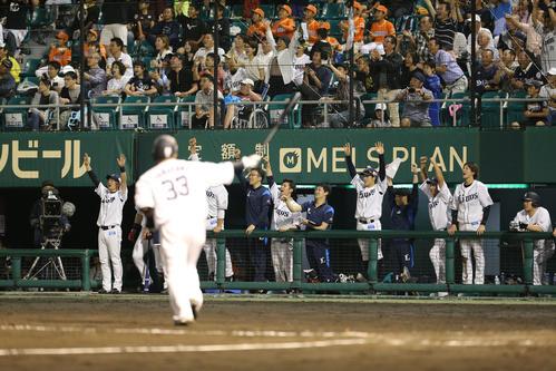 7回裏1死一、二塁、山川穂高が本塁打を放ち、ベンチのナインはばんざい(撮影・梅根麻紀)