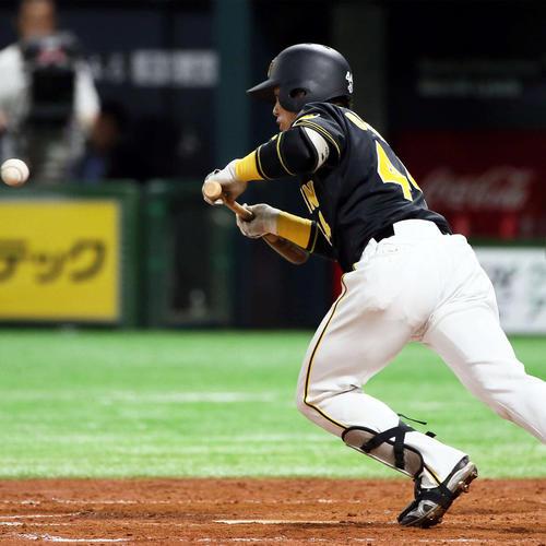 4回表阪神無死一塁、梅野は投前にセーフティーバントを決める(撮影・栗木一考)