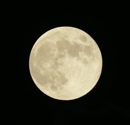 ロッテ対中日 ZOZOマリンの上空に姿を見せた6月の満月「ストロベリームーン」(撮影・中島郁夫)
