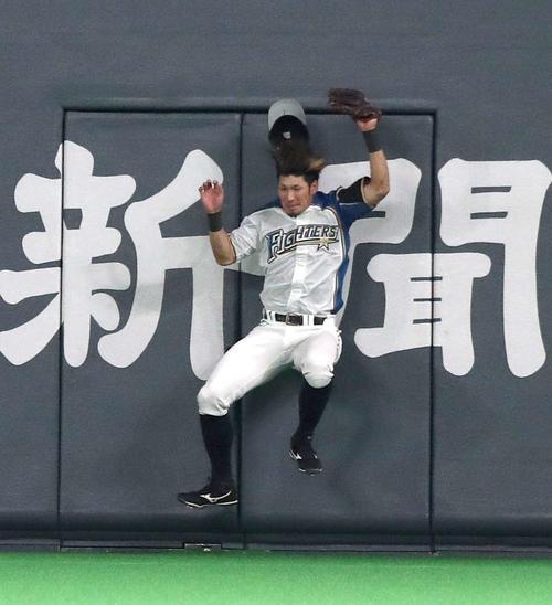 14日の日本ハム対巨人 5回表巨人2死、坂本勇の打球をフェンスに激突しながら捕球する大田(撮影・黒川智章)