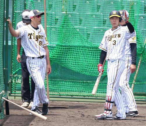 打撃練習で矢野監督(左)と話す大山(撮影・上山淳一)
