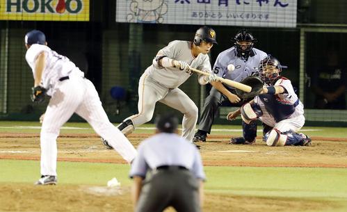 ヤクルト対巨人 11回表巨人無死一塁、大城の送りバントを、ヤクルト五十嵐亮太が一塁悪送球して、一塁走者立岡が一気に三塁を周り勝ち越しの生還(撮影・浅見桂子)