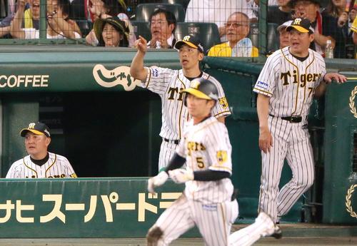 5回裏阪神2死一、二塁、矢野監督(左から2人目)は近本の右越え3点本塁打をベンチから指さす(撮影・上山淳一)