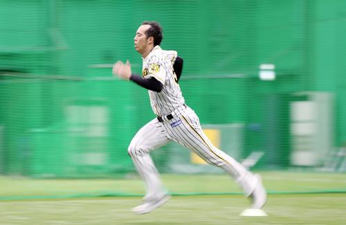 投手指名練習でダッシュを繰り返す青柳(撮影・前田充)