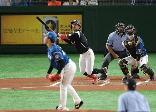 日本ハム対ロッテ 1回表ロッテ無死一塁。右越え本塁打を放つ鈴木。投手吉田輝(撮影・井上学)
