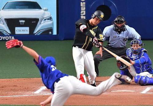 中日対阪神 6回表阪神2死、木浪は右越え本塁打を放つ(撮影・上田博志)