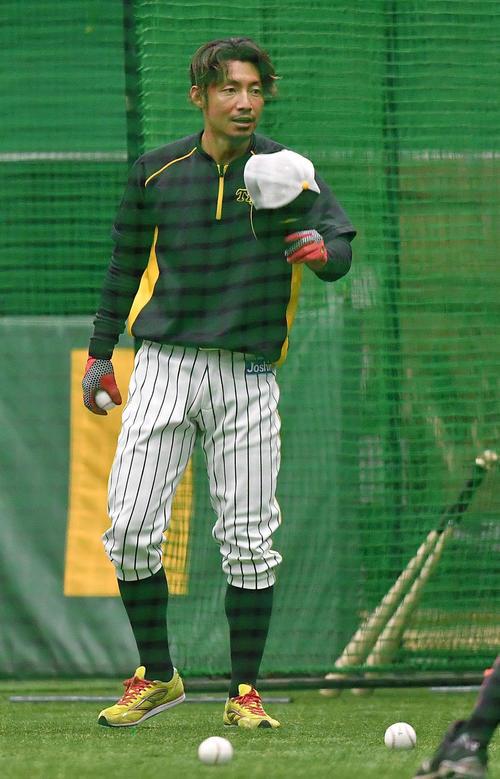 室内練習場でのフリー打撃練習を終え球拾いをする鳥谷敬(撮影・上田博志)