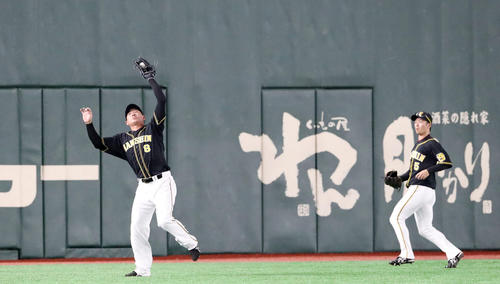 1回裏巨人1死、福留は坂本勇の天井直撃左飛を捕球する、右は近本(撮影・加藤哉)
