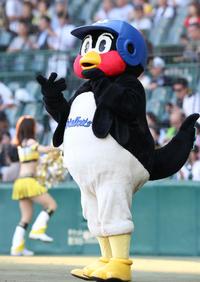 ヤクルト戸田球場が台風で冠水 つば九郎が伝える - プロ野球 : 日刊スポーツ