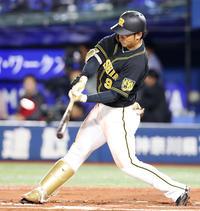 阪神高山、出場数増も「まだまだ」定位置奪取へ闘志 - プロ野球 : 日刊スポーツ