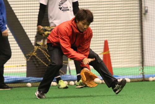 室内練習場でノックを受ける日本ハム中島(撮影・山崎純一)