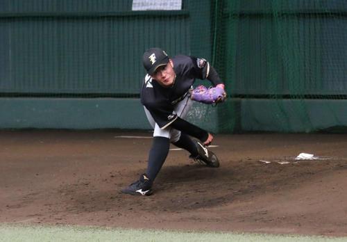 ブルペンで投球練習を行う日本ハム吉田輝(撮影・中島宙恵)