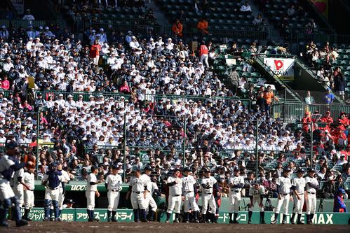 「PL」の人文字を作って応援する三塁側スタンド(撮影・上田博志)