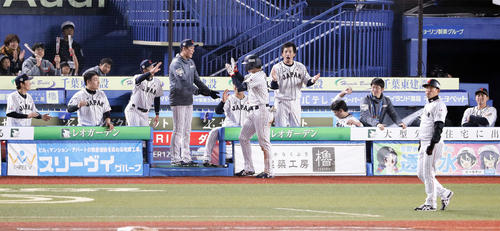 日本対オーストラリア 4回裏日本2死、鈴木(中央)が左翼ソロ本塁打を放ち、喜んで迎える坂本勇(中央左)、松田宣(同右)ら日本ベンチ(撮影・浅見桂子)