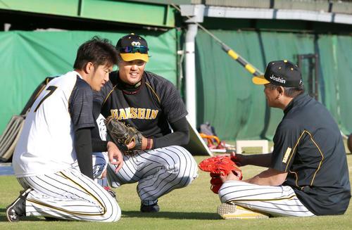 山本昌臨時コーチは座って阪神岩貞(左)、藤浪(中央)に話す(撮影・上山淳一)