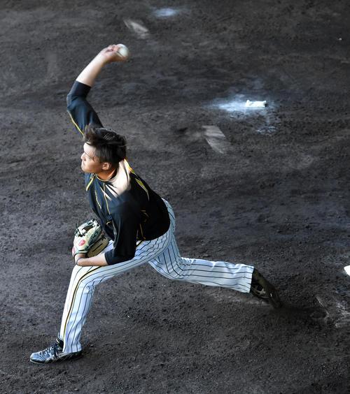 ブルペンで投球練習を行う秋山(撮影・前岡正明)