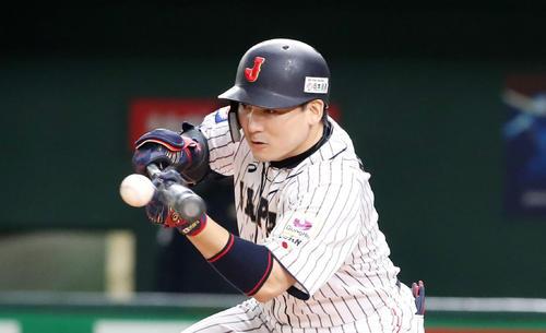 日本対韓国 3回裏日本無死二塁、丸は投前に犠打を決め野選となる(撮影・加藤哉)