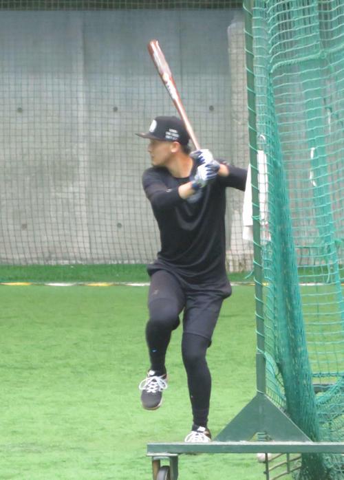 自主トレーニングで打撃練習を行う巨人吉川尚(撮影・湯本勝大)