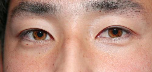 目の虹彩がひまわりのように見える日本ハム望月(撮影・黒川智章)