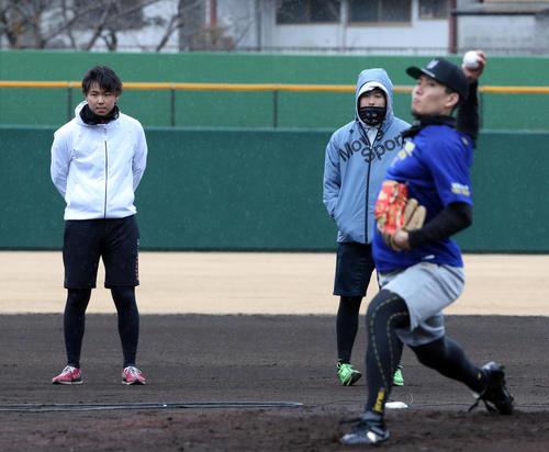 千賀(右手前)の投球を見つめる浜地(左)(撮影・栗木一考)