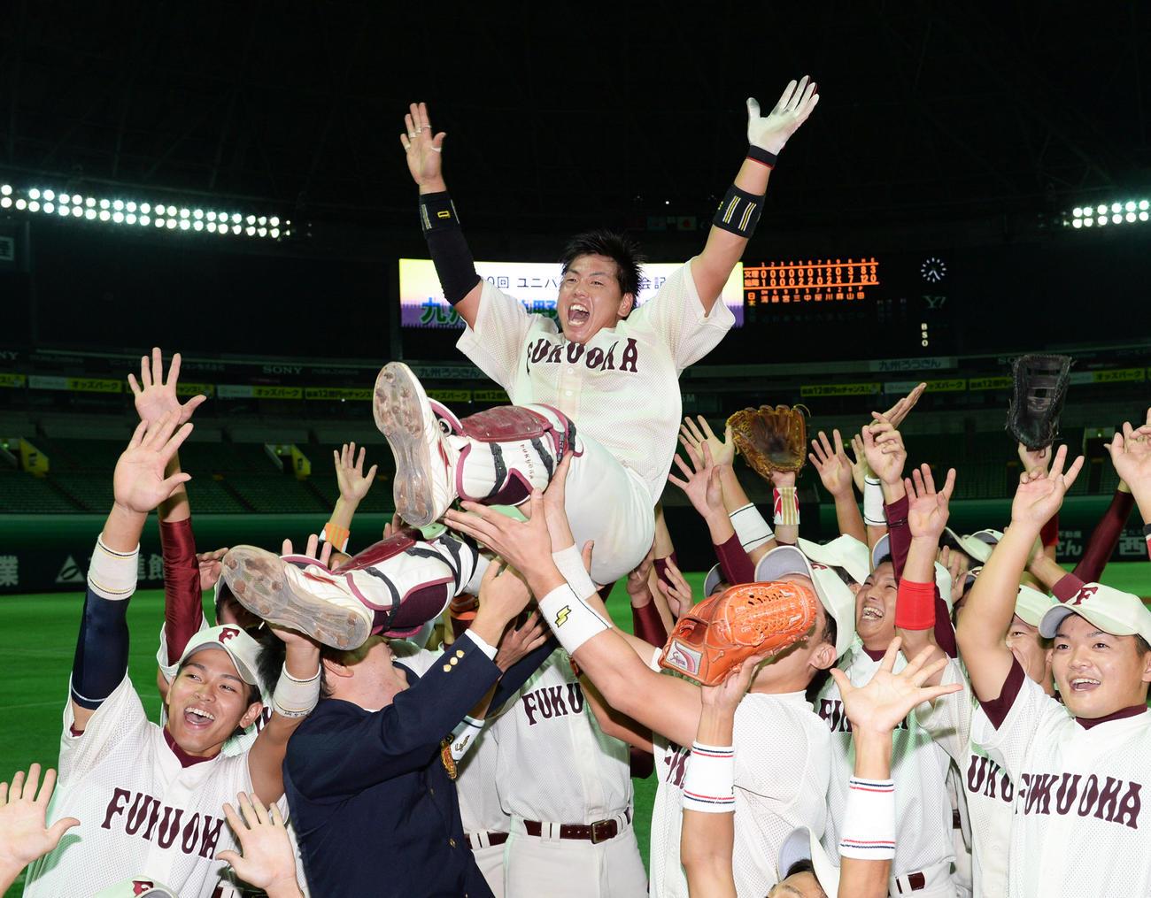 九州大学選手権で優勝し福岡大ナインから胴上げされる梅野隆太郎(2013年11月8日撮影)