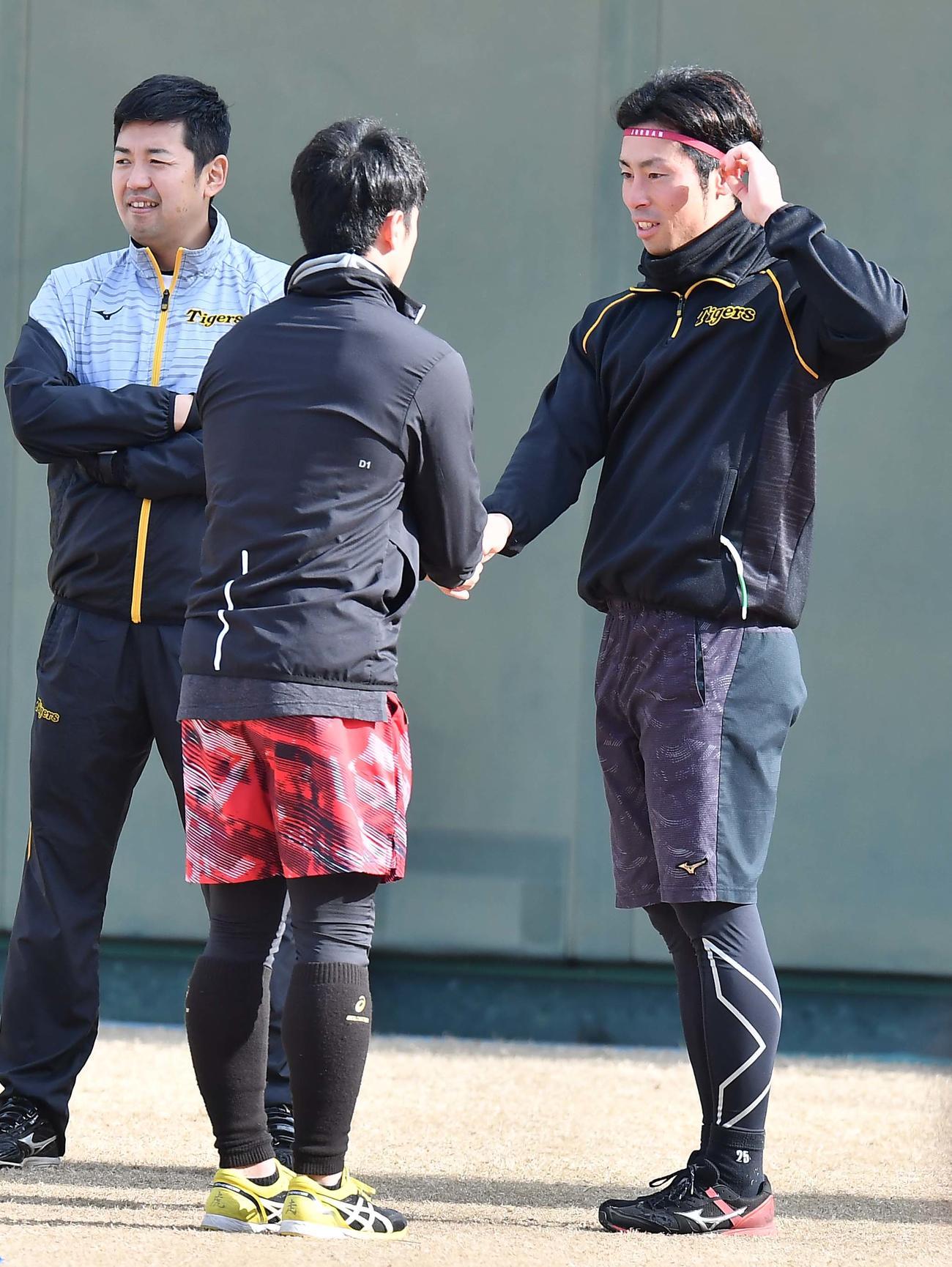 鳴尾浜で自主トレする江越(右)は近本と握手を交わす(撮影・上田博志)