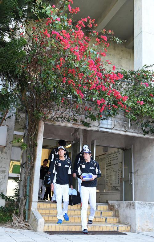 色鮮やかな花を背に球場へ向かうロッテ佐々木朗(右)(撮影・横山健太)